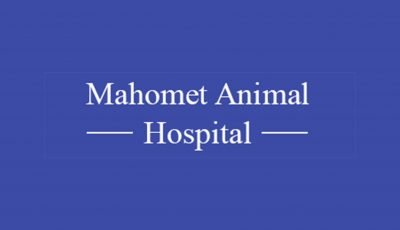 Mahomet Animal Hospital 3D Model