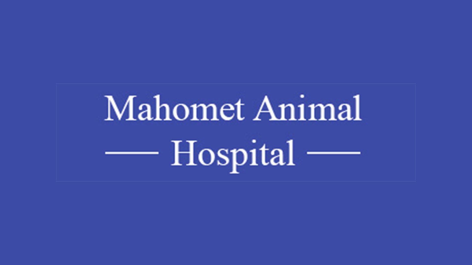 Mahomet Animal Hospital